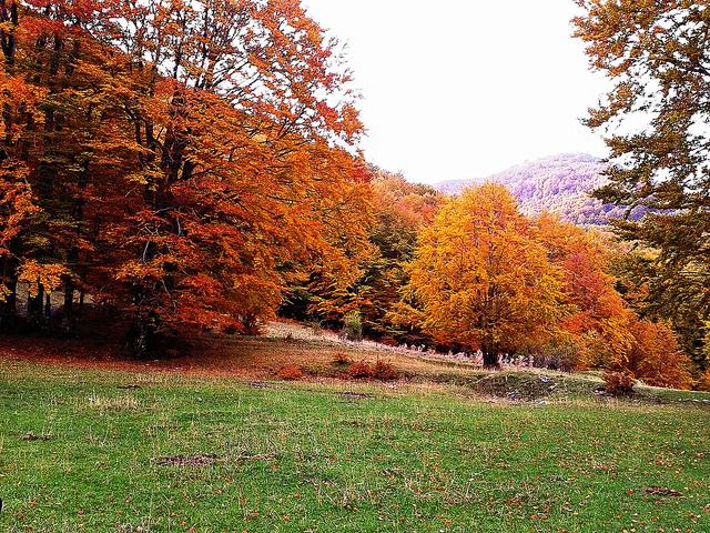 Parco Nazionale del Pollino, Calabria