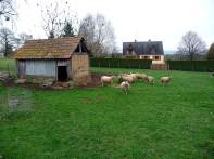 Bretanha, fazenda