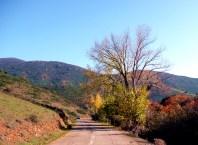 Córsega - de Cavi a St-Laurent, o outono nas montanhas