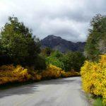 Argentina, Patagônia, estrada