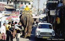Rua de udaipur, Índia