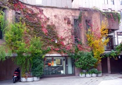 Matera, as cores do outono