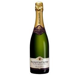 Champagne, uma bebida especial