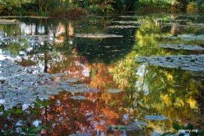 Reflexos do outono, Giverny - Photo Ariane Cauderlier