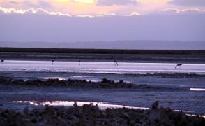 Salina no Atacama, Chile