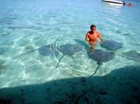 Mergulho no meio de arraias em Bora-Bora
