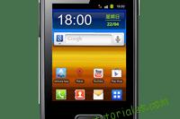 Samsung Galaxy Pocket S5300 Manual de usuario PDF