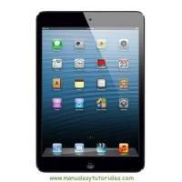Manual iPad Español PDF