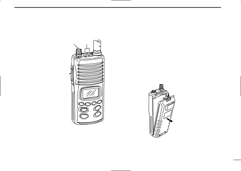 Icom ICM3 EURO User Manual