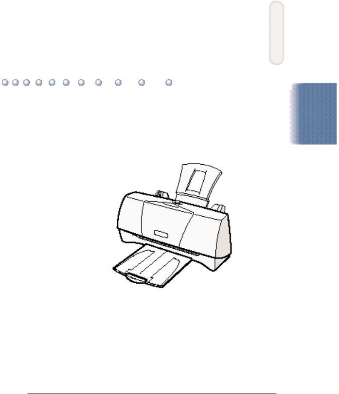 Canon BJC-2000 User Manual