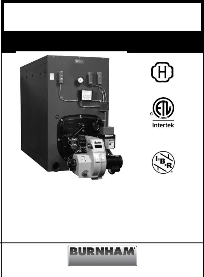burnham v9a user manual