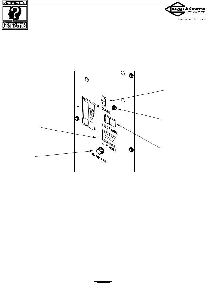 Briggs & Stratton 190839GS User Manual