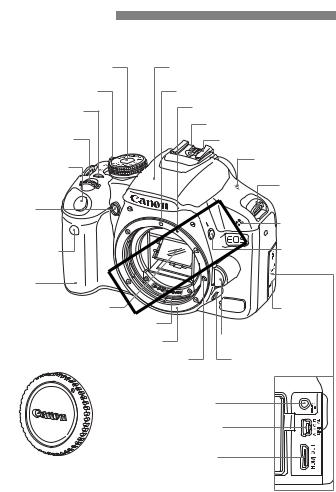 Canon DS126231, EOS Rebel T1i User Manual