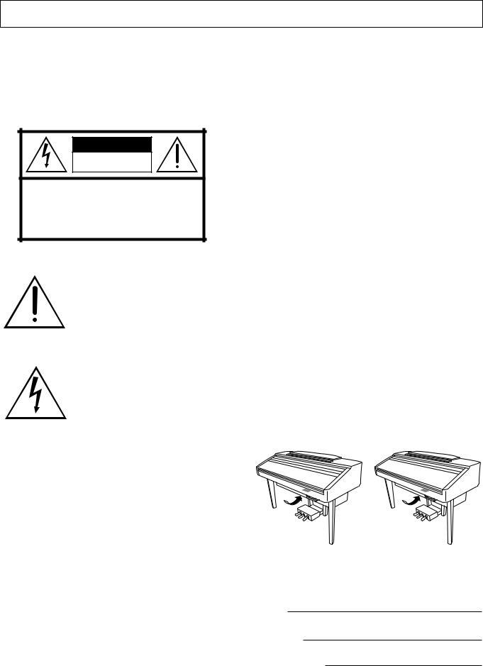 Yamaha CVP-207, CVP-209, CVP-207 EN User Manual