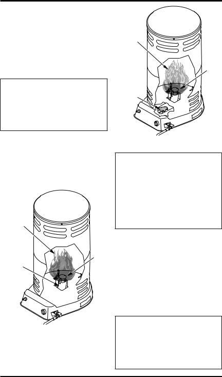 Desa Tech TC106, TC107 Owner's Manual