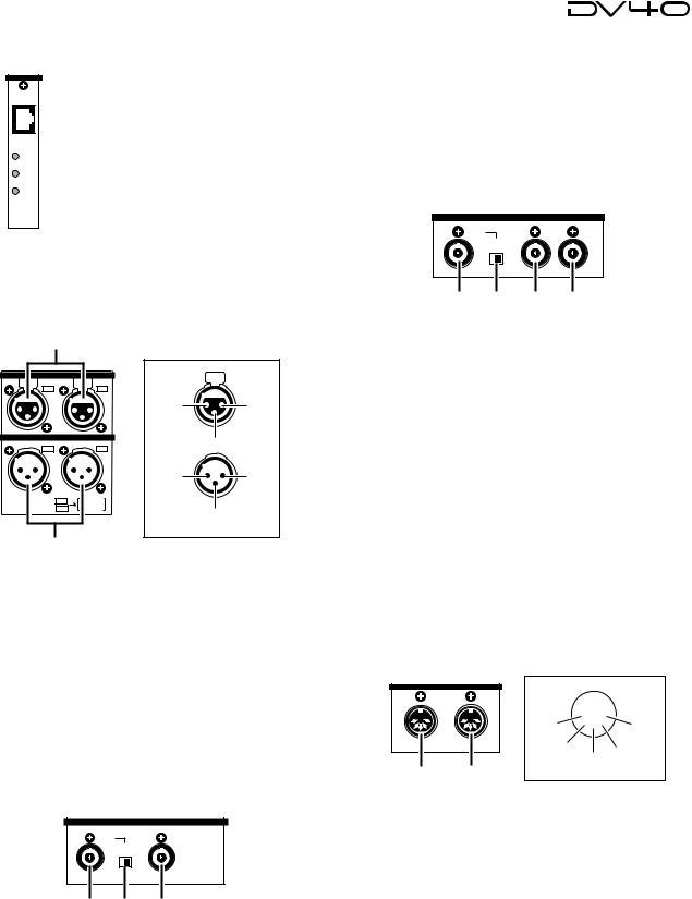 Fostex DV40 User Manual