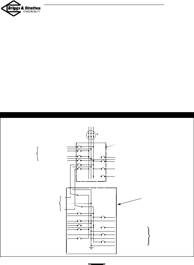 Briggs & Stratton 01917-0, 01918-0 User Manual