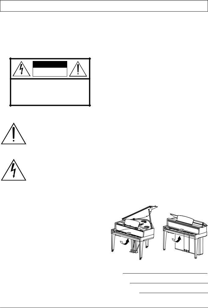 Yamaha AVANTGRAND N3, AVANTGRAND N2 User Manual