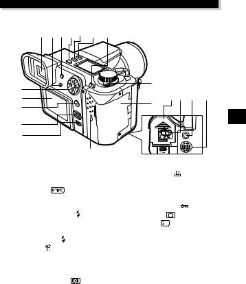 Olympus E-10 RS, E-100 RS User Manual