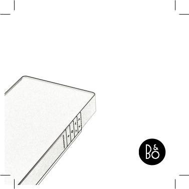 Bang & Olufsen BeoSound User Manual