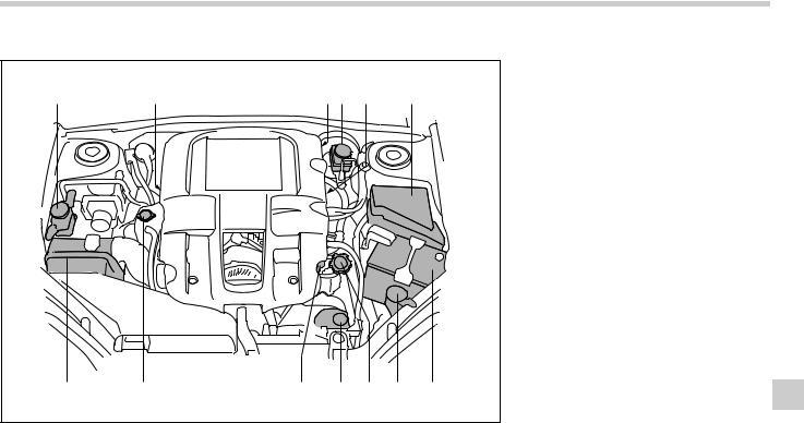 Subaru Legacy 2006 Maintenance and Service Guide