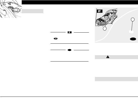 Aprilia SCARABEO 50 I.E-100 4T User Manual 2001