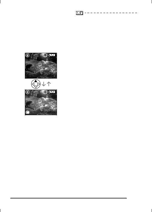 Panasonic dmc-tz5pp, dmc-tz5 Operation Manual