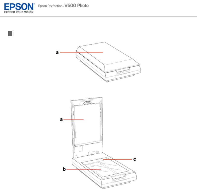 Epson PERFECTION V600 PHOTO User Manual