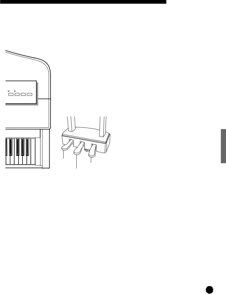 Yamaha CLP-555 User Manual