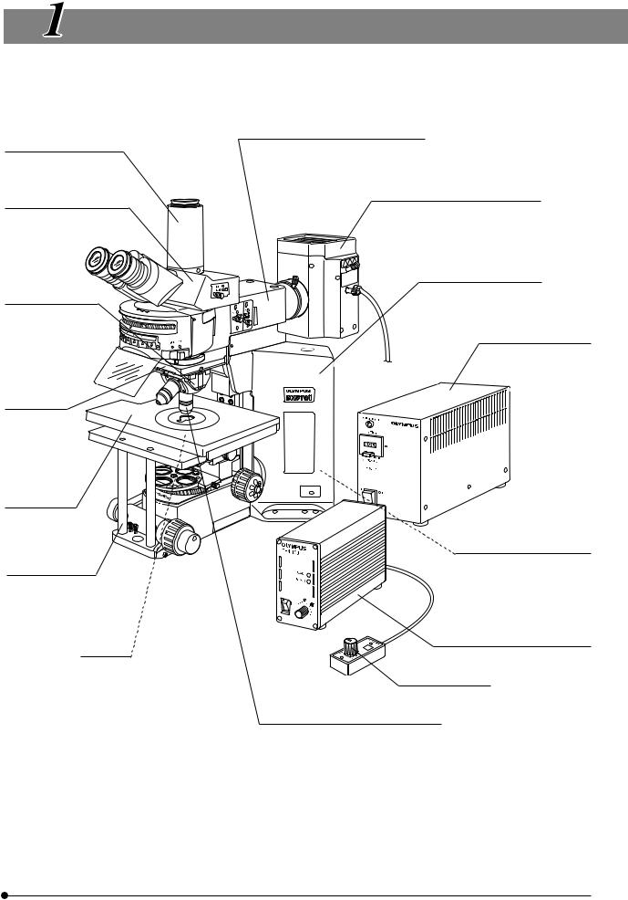 Olympus BX51WI User Manual