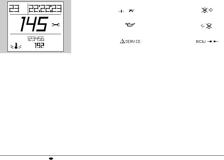 Aprilia TUONO 1000, 2006 Tuono 1000 User Manual 2006