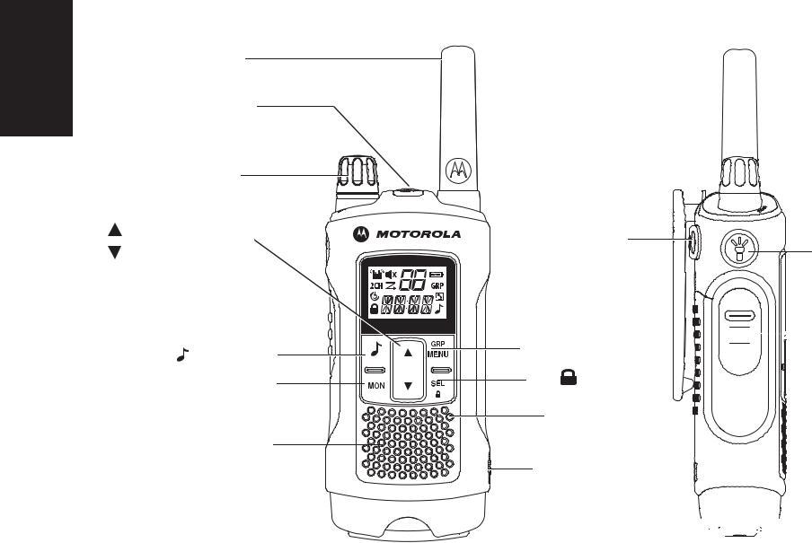Motorola T80, T80 EXTREME User Manual