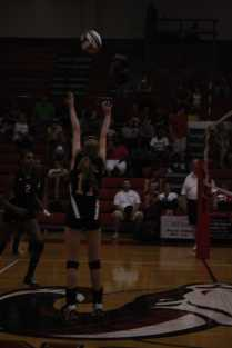 Emily Porta sets the outside hitter, Taylor little.
