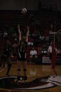Emily Porta sets the outside hitter, Taylor little.
