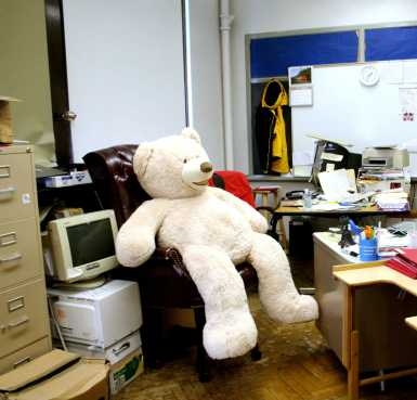 Students sit the bear brought by Mitchell Khale (11) in Dr. Wiek's chair. Photo by Miracle Stewart