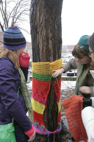 Irene Mudd (12) begins stitching a pre-knitted yarn piece on a tree. Photo by Allison Traylor.