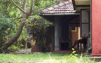 Panchakarma, récit d'un mois de détox avec l'ayurdvéda