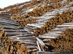 Proper logging