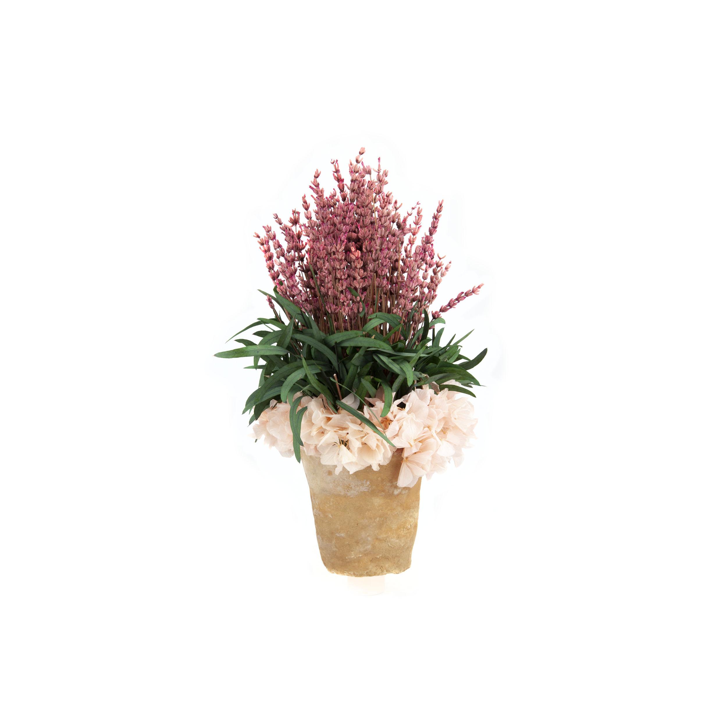 Maceta flores preservadas