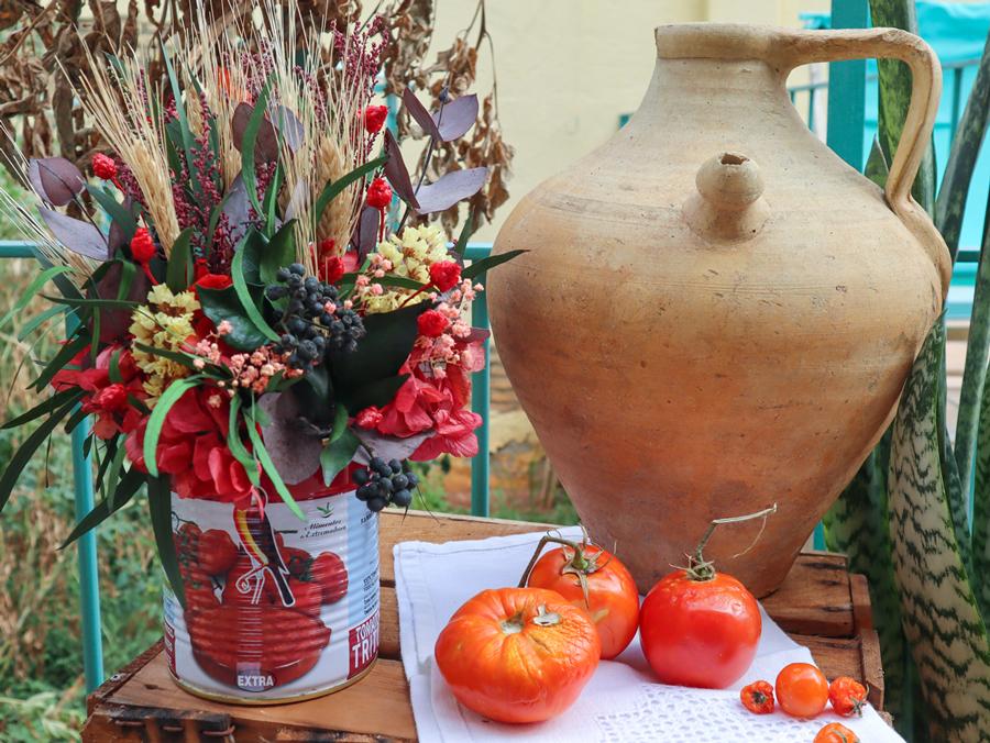 comp-tomate-martinete-exterior-2