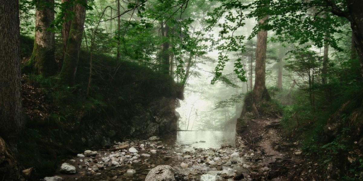 Lainbachfälle im Nebel