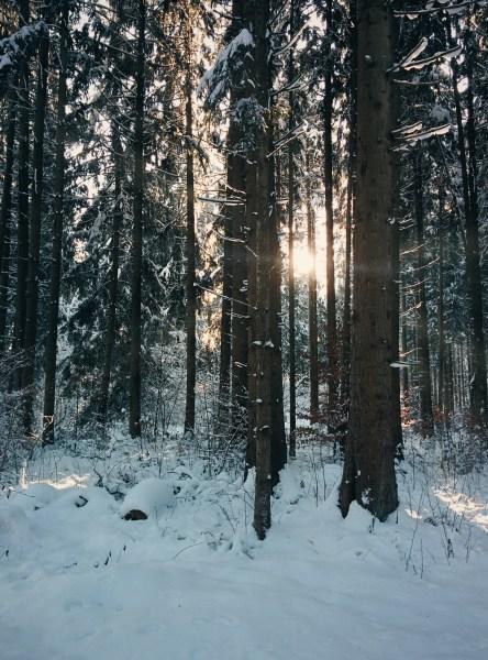 Sonnige Winterlandschaft in Gauting