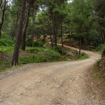 Talaia d'Alcúdia, Mallorca
