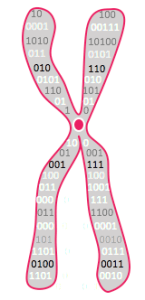 chromosome logo