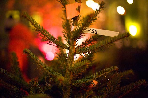 Weihnachtsbaum mit Preisschild