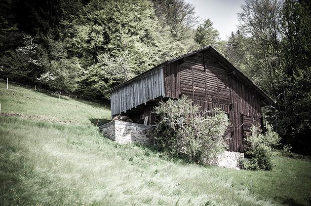 Altes Haus auf einer Wiese vor einem Wald in Beatenberg.