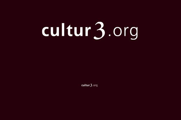 Schriftzug cultur3org – Logo-Design negativ mit dem Zusatz «org»
