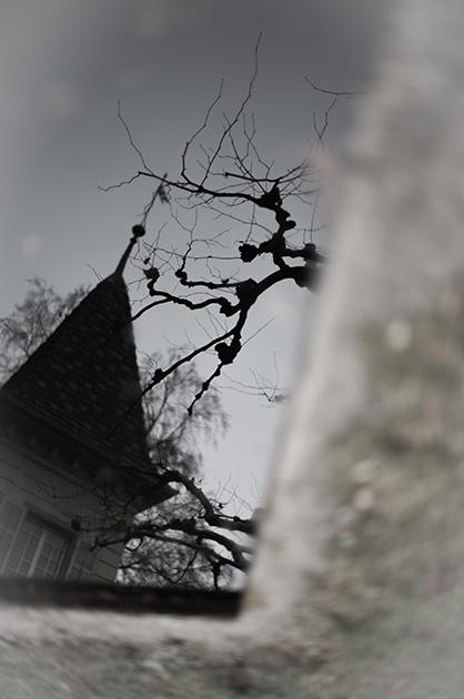 Ein Turm der Schule Musegg mit einem Ast eines Kastanienbaumes, gespiegelt im Wasser eines Teiches