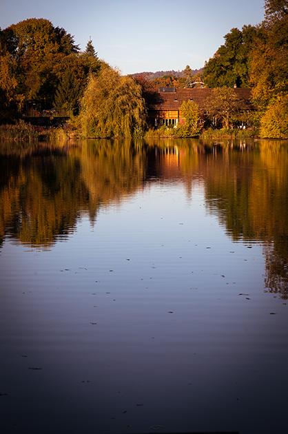 Egelsee Bern, Herbst, Spiegelung eines Hauses im Seewasser
