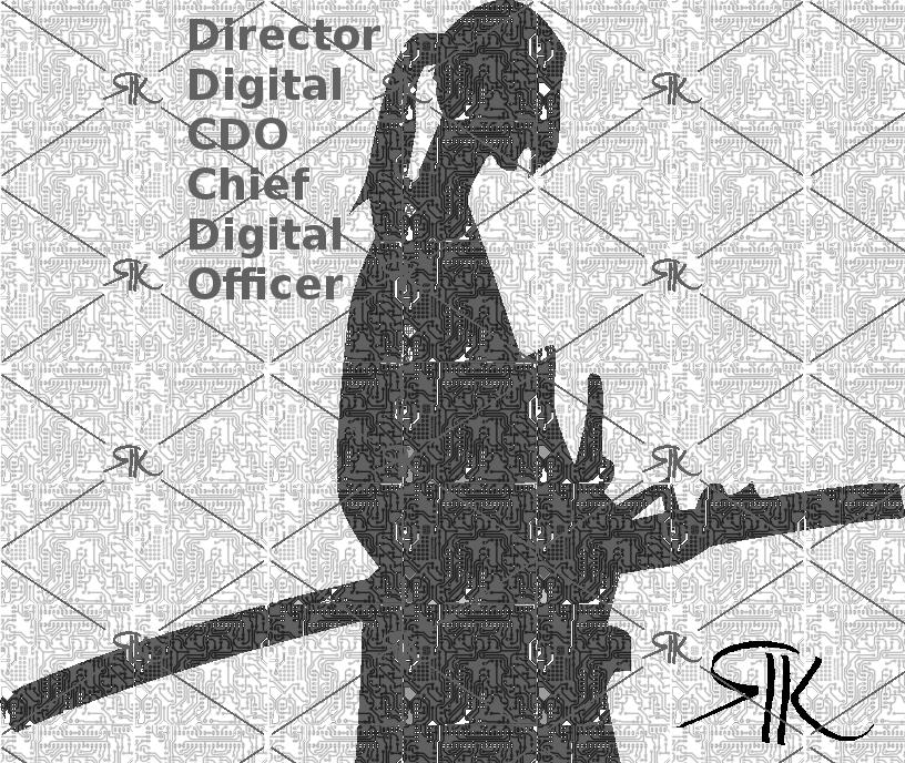 CDO Chief Digital Officer